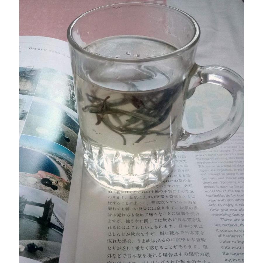 本場福建産 2020年有機白茶 ホワイトティー 福鼎白豪銀針 ティーバッグ31包( 強力な抗酸化物質が豊富 ) coconina 02