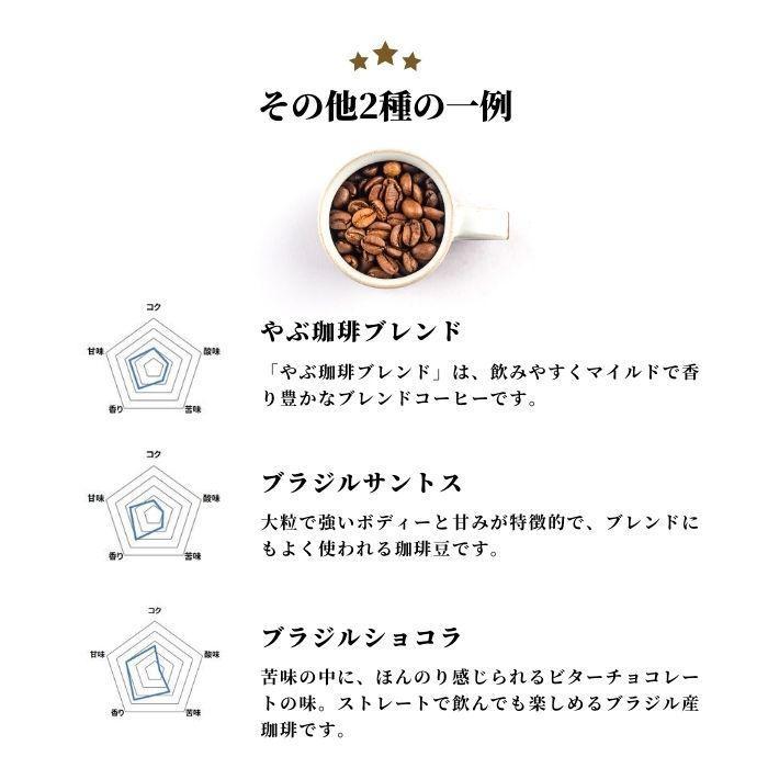 メール便 送料無料 コピルアク ドリップコーヒー 1袋 お試し 2袋 飲み比べ   1000円 ポッキリ ジャコウネコ コーヒー 自家焙煎 本格 こだわり ギフト 包装無料 coffeeyabu 08