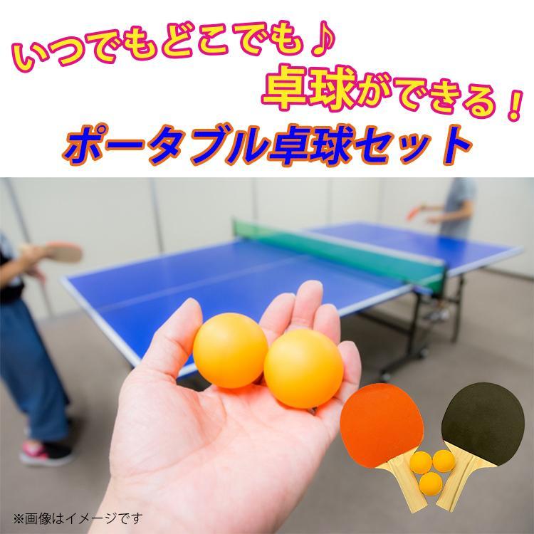 地球家具 卓球セット アウトドア 卓球 ラケット2つ ボール3つ ネット付|collectioncasestore|02