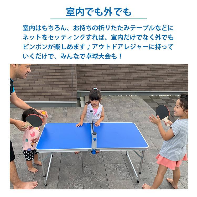 地球家具 卓球セット アウトドア 卓球 ラケット2つ ボール3つ ネット付|collectioncasestore|04