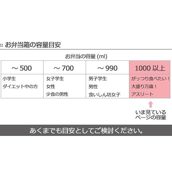 お弁当箱 1段 ガッツリ パッキン付 1000ml ( 弁当箱 大容量 仕切り付 1L 日本製 おすすめ )|colorfulbox|08