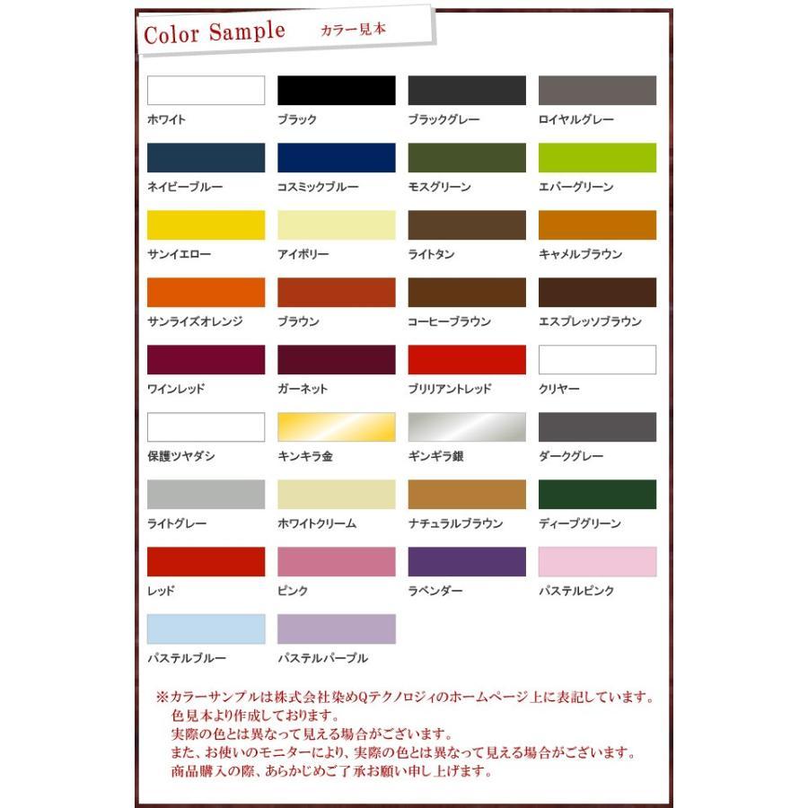 染めQエアゾール [70ml]|colour-harmony|02
