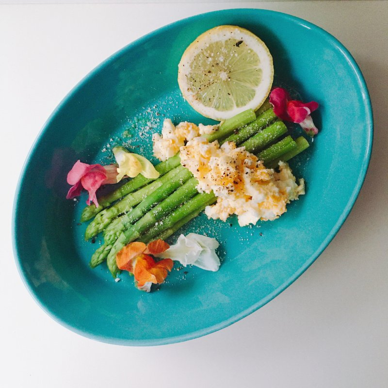パスタ皿 カレー皿 オーバル皿 エスポ― ターコイズ/レッド 22cm 日本製 美濃焼 磁器 アウトレット conceptstore