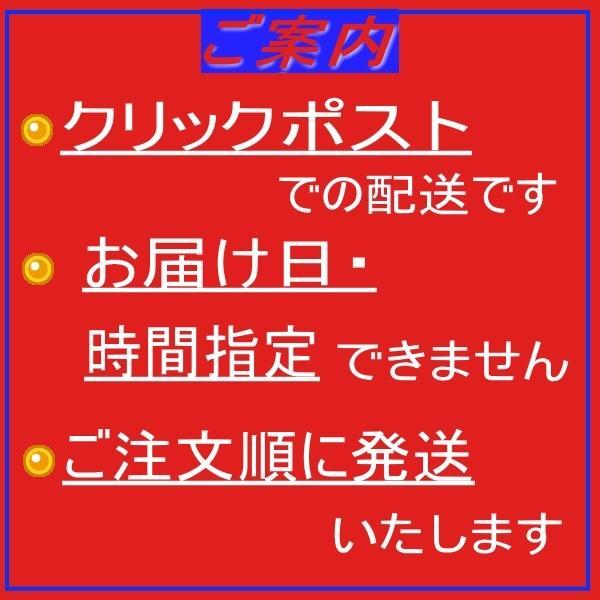 【送料無料】 チョコレートケーキ 手作り 無添加 プチギフト|conditorei-toyodo|06