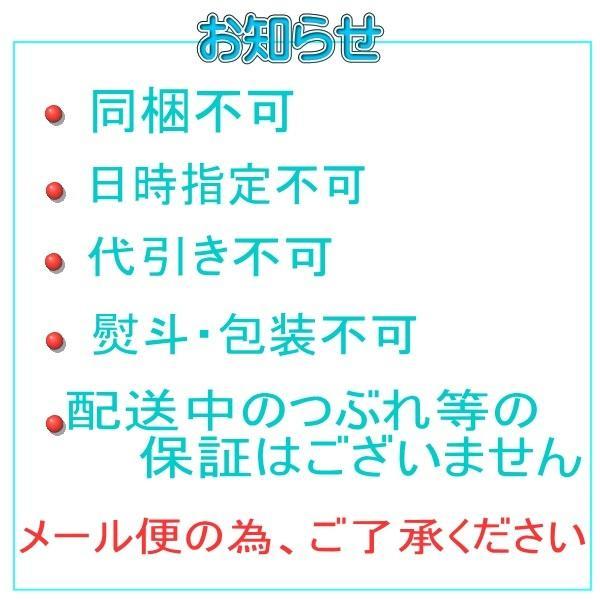 【送料無料】 チョコレートケーキ 手作り 無添加 プチギフト|conditorei-toyodo|07