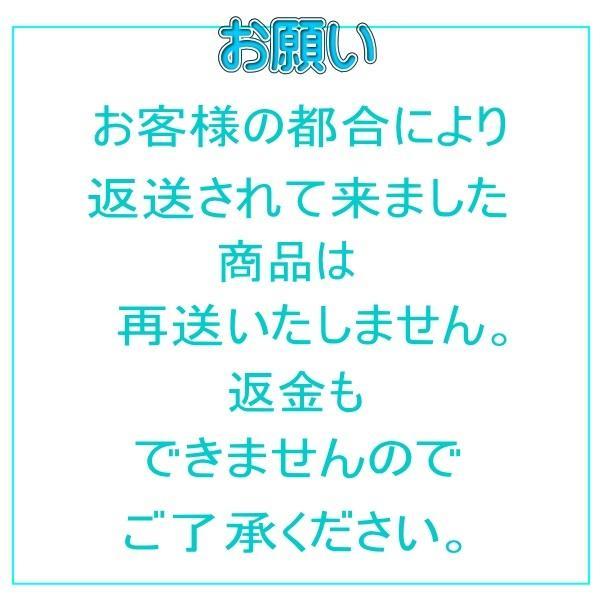 【送料無料】 チョコレートケーキ 手作り 無添加 プチギフト|conditorei-toyodo|08