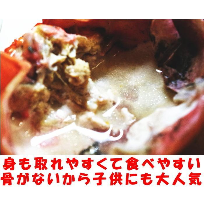 カニ 紅ずわいがに 3尾 未冷凍 水揚げ当日出荷 新鮮 ボイル 蟹 送料無料 鳥取 境港直送 かに 姿 紅ずわい蟹 300〜390g×3尾 A級品 ギフト cooksanchoku 07