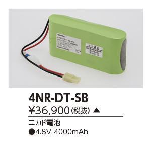 東芝 4NR-DT-SB 誘導灯・非常用照明器具の交換電池 受注生産品 受注生産品 受注生産品 [∽§] 3e5