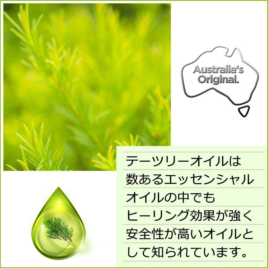 ティーツリーシャンプー 250ml Thursday Plantation エブリディシャンプー 保湿 ハリ こし 潤い ツヤ ティーツリーオイル cosmo-welva 06