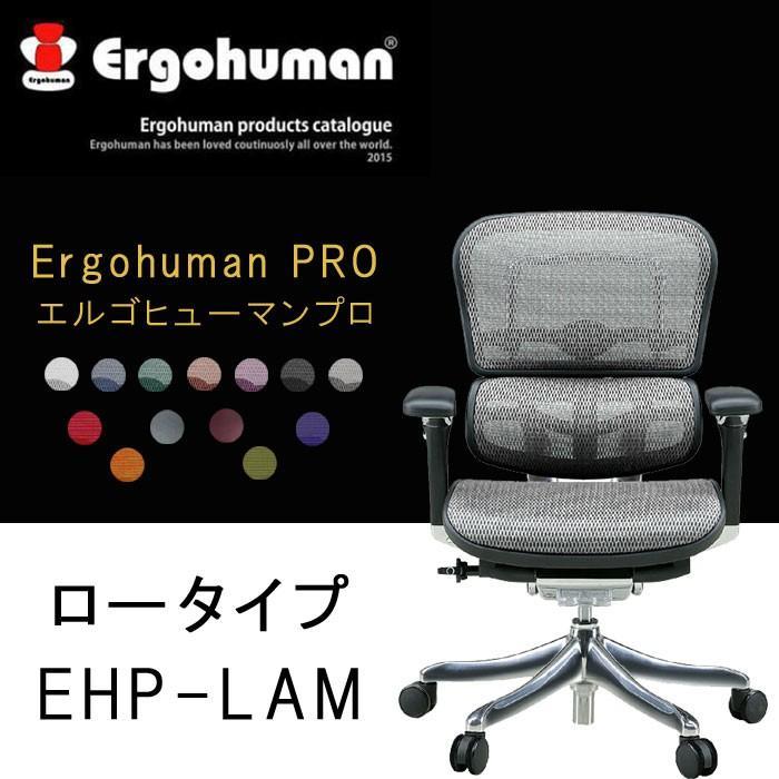 Ergohuman PRO エルゴヒューマンプロ ロータイプ EHP-LAM t001-
