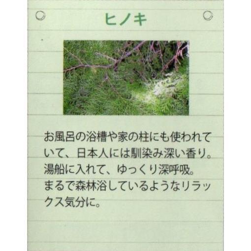 ヒノキ エッセンシャルオイル DAILY AROMA 精油3ml crococko 03