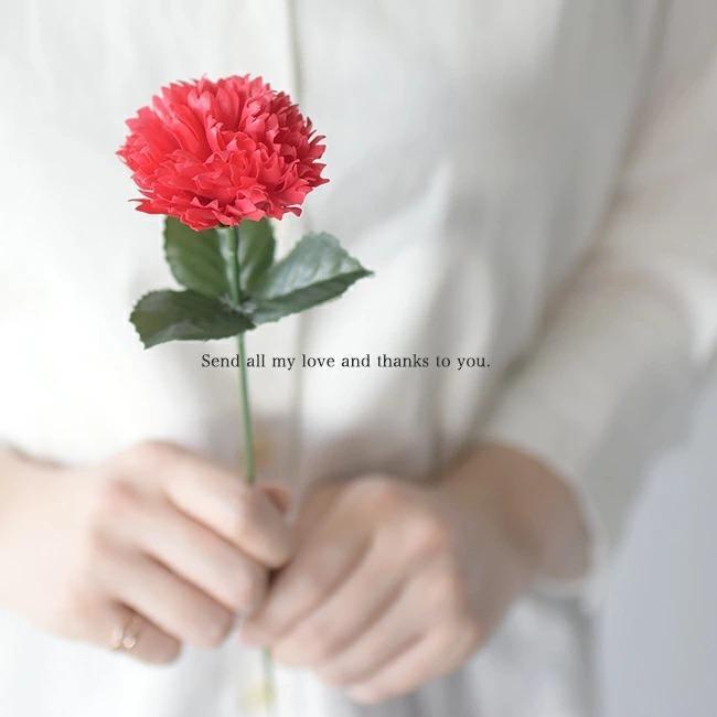 母の日ラッピング(1円)【メール便不可】|crouka|04