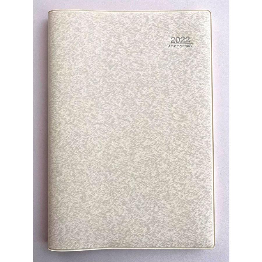2021 アイアイ手帳 Amazing Diary  SQ教育の実践に最適!|csidoabata|05