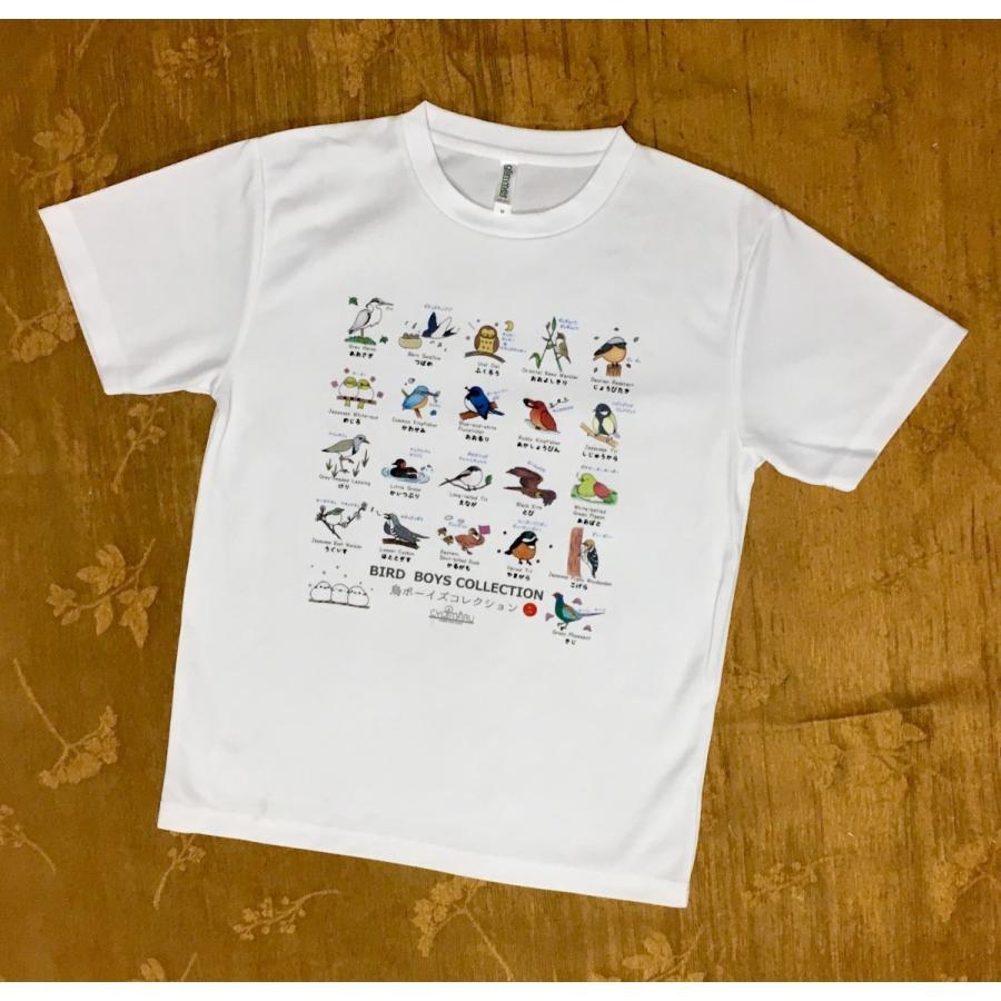 【野鳥Tシャツ】鳥ボーイズコレクションTシャツ《野鳥図鑑Tシャツ》名前や鳴き声も覚えられる♪ cyoimaru 02