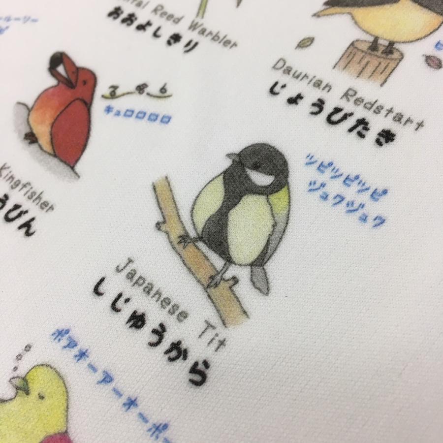 【野鳥Tシャツ】鳥ボーイズコレクションTシャツ《野鳥図鑑Tシャツ》名前や鳴き声も覚えられる♪ cyoimaru 03
