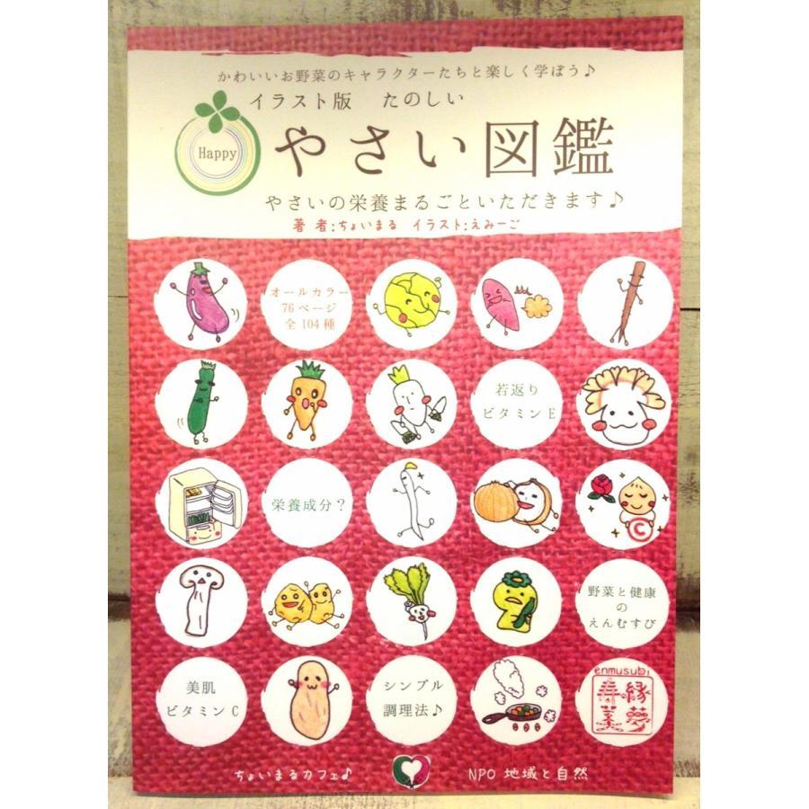 【3冊までメール便対応可】イラスト版たのしい野菜図鑑 cyoimaru