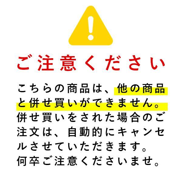 [8月中旬入荷予定 数量限定] TACOMA FUJI RECORDS TACOMA FUJI HANDWRITING LOGO Tee '21 代官山 蔦屋書店限定カラー Tシャツ|d-tsutayabooks|04