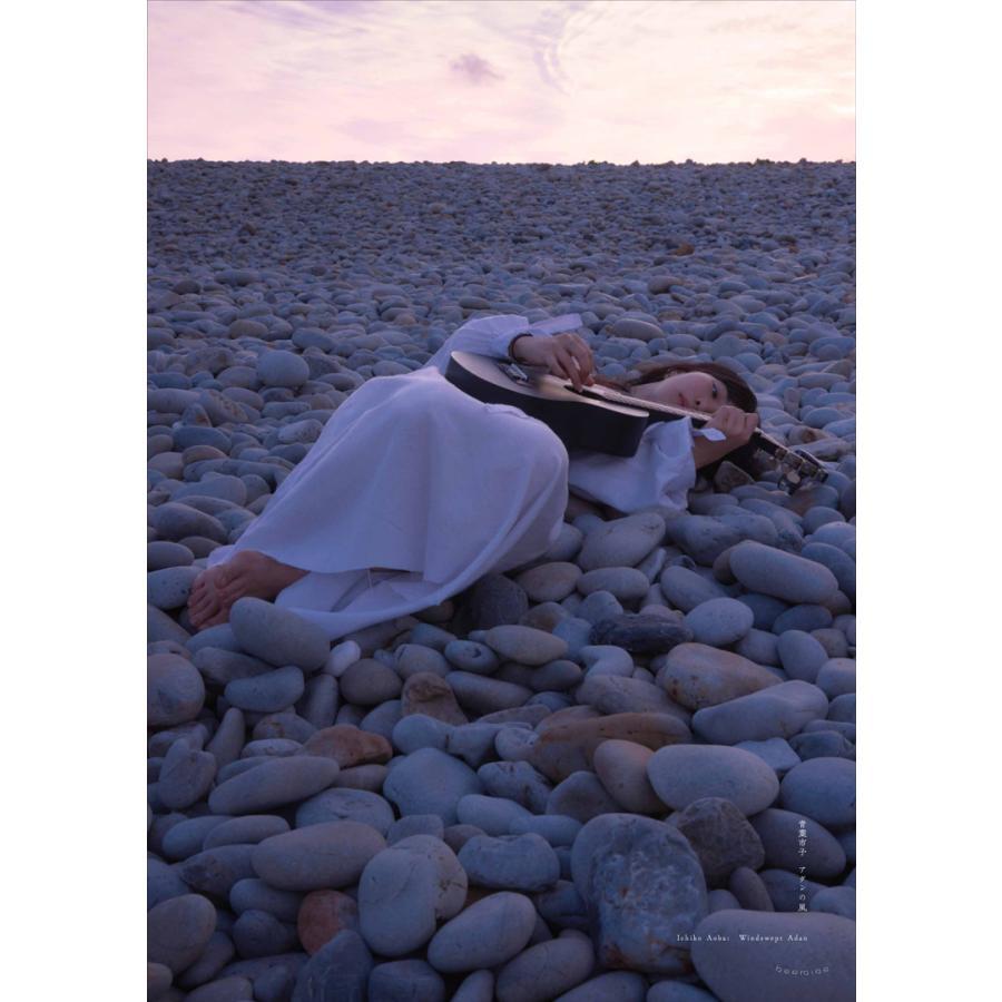 Windswept Adan Poster|d-tsutayabooks|05