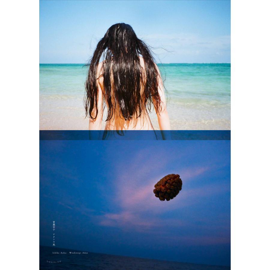 Windswept Adan Poster|d-tsutayabooks|06