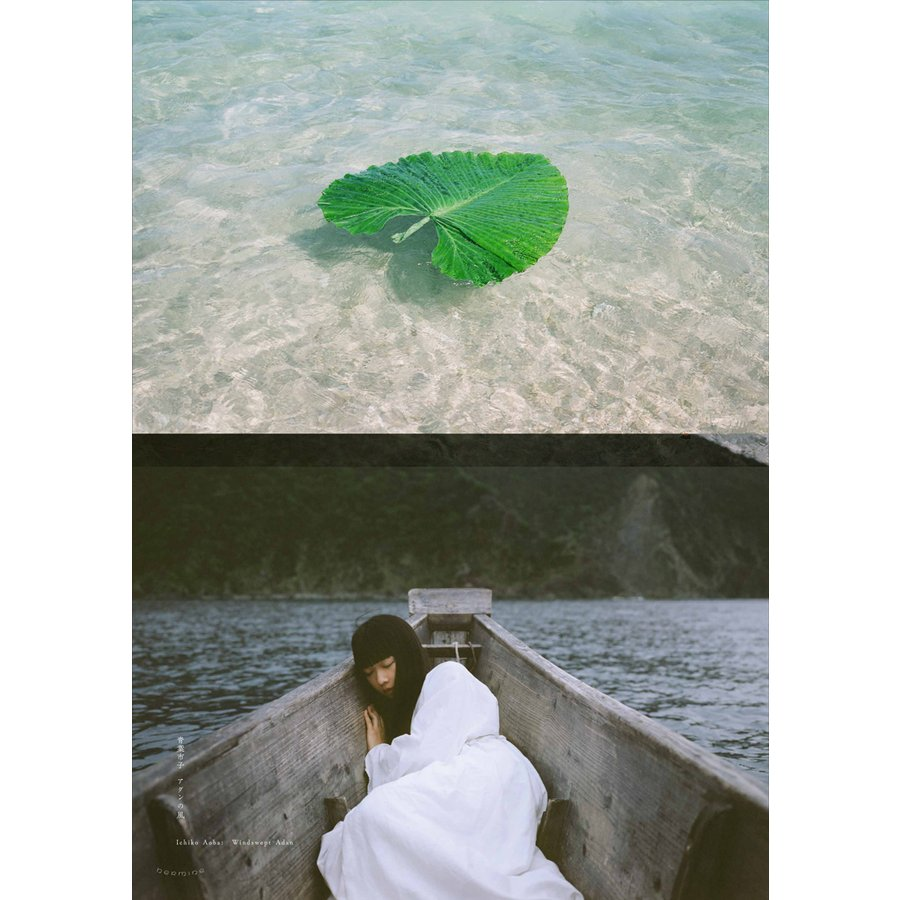 Windswept Adan Poster|d-tsutayabooks|08