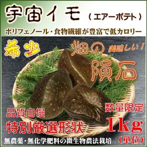 宇宙イモ エアーポテト そらいも 1kg 良い形厳選 旬の野菜 ヤマノイモ 粘りと食感の新健康食材 農薬化学肥料不使用|daichi-megumi