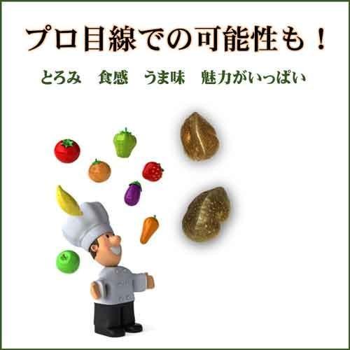 宇宙イモ エアーポテト そらいも 1kg 良い形厳選 旬の野菜 ヤマノイモ 粘りと食感の新健康食材 農薬化学肥料不使用|daichi-megumi|03