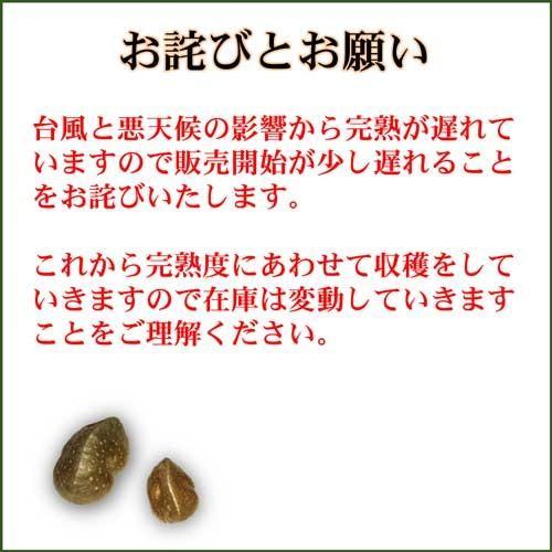 宇宙イモ エアーポテト そらいも 1kg 良い形厳選 旬の野菜 ヤマノイモ 粘りと食感の新健康食材 農薬化学肥料不使用|daichi-megumi|05