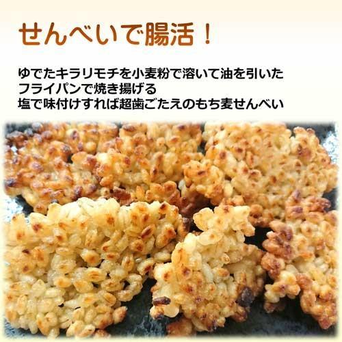 国産 無農薬 もち麦 キラリモチ お得な900g 農薬・化学肥料不使用  美味しい希少もち麦で食物繊維を実感 daichi-megumi 17