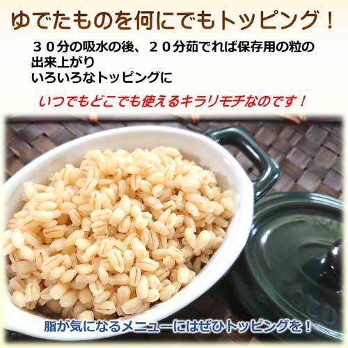 国産 無農薬 もち麦 キラリモチ お得な900g 農薬・化学肥料不使用  美味しい希少もち麦で食物繊維を実感 daichi-megumi 18