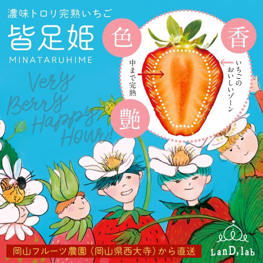 いちごの国ギフト[2Lサイズ(36粒)]濃味トロリ完熟いちご『皆足姫(みなたるひめ)』|daiki-foods|02