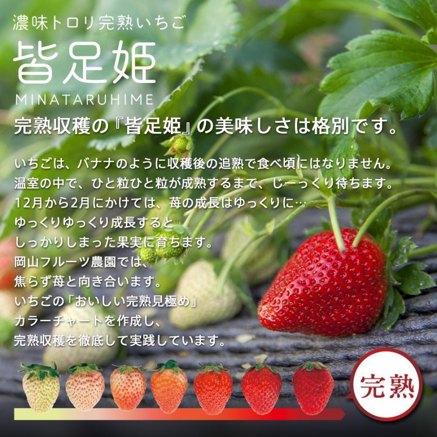 いちごの国ギフト[3Lサイズ(25粒)]濃味トロリ完熟いちご『皆足姫(みなたるひめ)』 daiki-foods 03