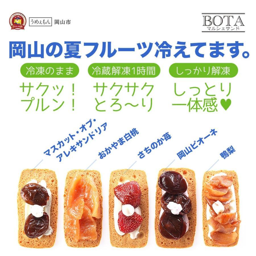 サブレサンドBOTAマルシェサンド(5種詰め合わせ) daiki-foods 05