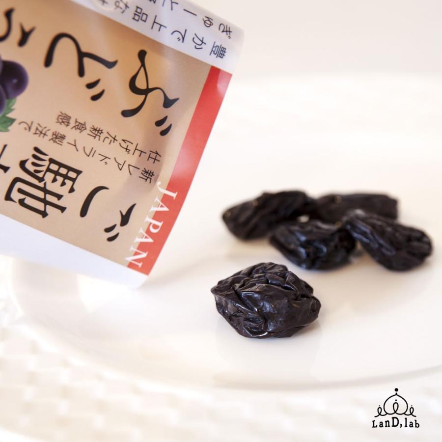 国産ドライフルーツ ご馳走ぶどう オーロラブラック 30g daiki-foods 02