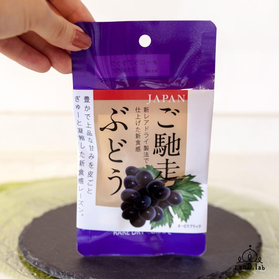 国産ドライフルーツ ご馳走ぶどう オーロラブラック 30g daiki-foods 05