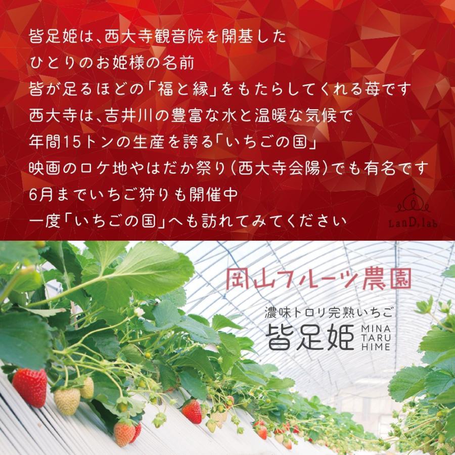 いちごの国ギフト[ Lサイズ(49粒) ]濃味トロリ完熟いちご『皆足姫(みなたるひめ)』|daiki-foods|05
