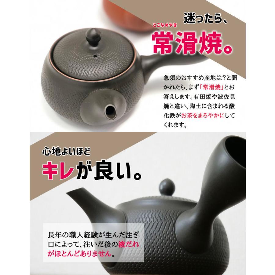 常滑焼 急須 黒 深蒸し 日本製 ステンレス 茶こし 黒泥 300ml きつさこ daily-central 06