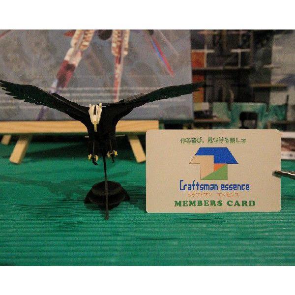 立体 ペーパークラフト ウラノ 3Dペーパーパズル 白頭鷲 【台座付き】(送料無料・小型便にて配送)|dambool-crafts|02