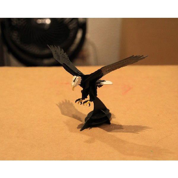 立体 ペーパークラフト ウラノ 3Dペーパーパズル 白頭鷲 【台座付き】(送料無料・小型便にて配送)|dambool-crafts|04
