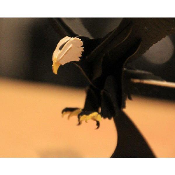 立体 ペーパークラフト ウラノ 3Dペーパーパズル 白頭鷲 【台座付き】(送料無料・小型便にて配送)|dambool-crafts|05