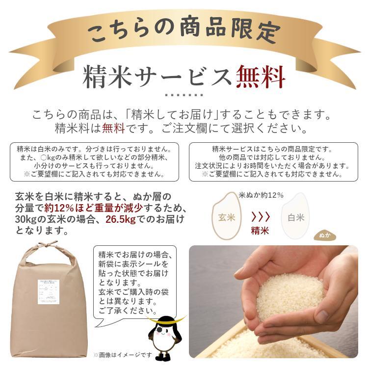 あきたこまち 玄米 30kg 秋田県産 令和2年産|datekura-takumi|03