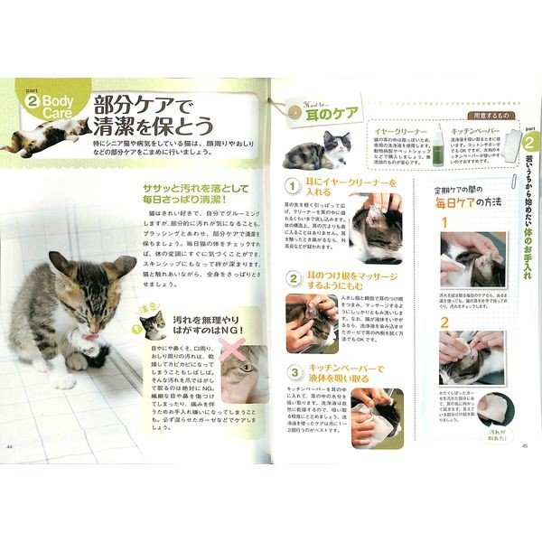 【50%OFF】決定版 うちの猫の長生き大事典|day-book|05