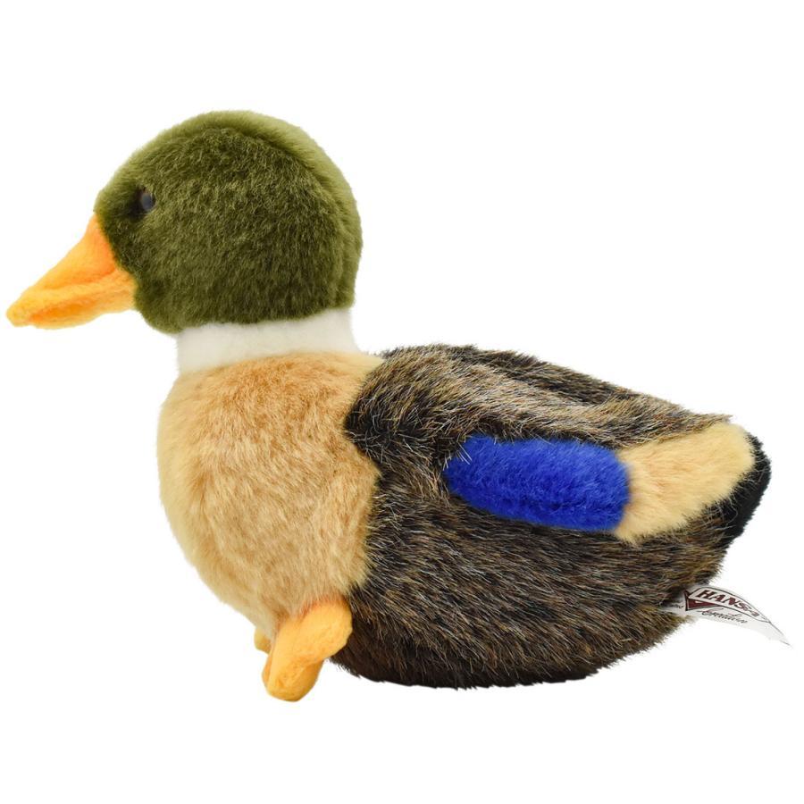 HANSA ハンサ マガモ 子 鳥 2053 リアル 動物 ぬいぐるみ プレゼント ギフト 母の日 父の日|dearbear|02