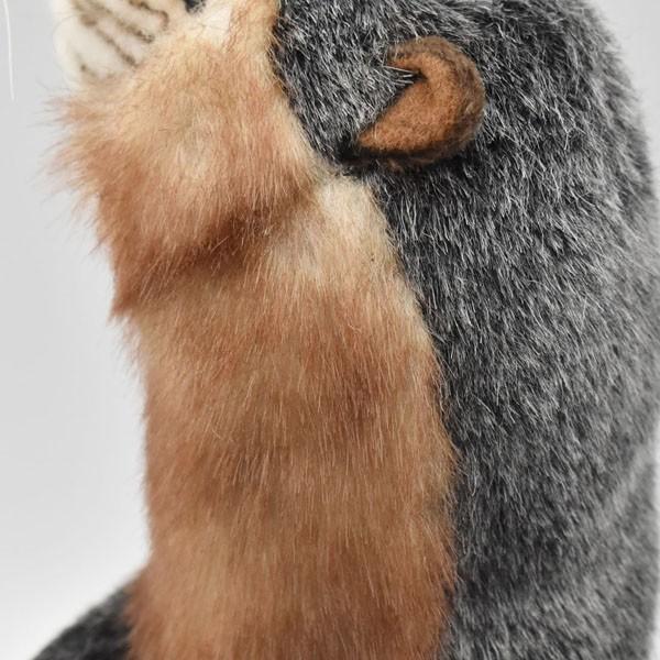 HANSA ハンサ カワウソ 3814 リアル 動物 ぬいぐるみ プレゼント ギフト 母の日 父の日|dearbear|05