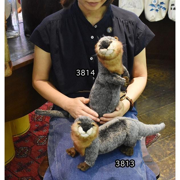 HANSA ハンサ カワウソ 3814 リアル 動物 ぬいぐるみ プレゼント ギフト 母の日 父の日|dearbear|08