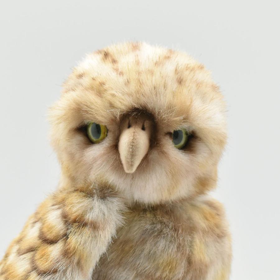 HANSA ハンサ アナフクロウ 鳥 5203 リアル 動物 ぬいぐるみ プレゼント ギフト 母の日 父の日|dearbear|04