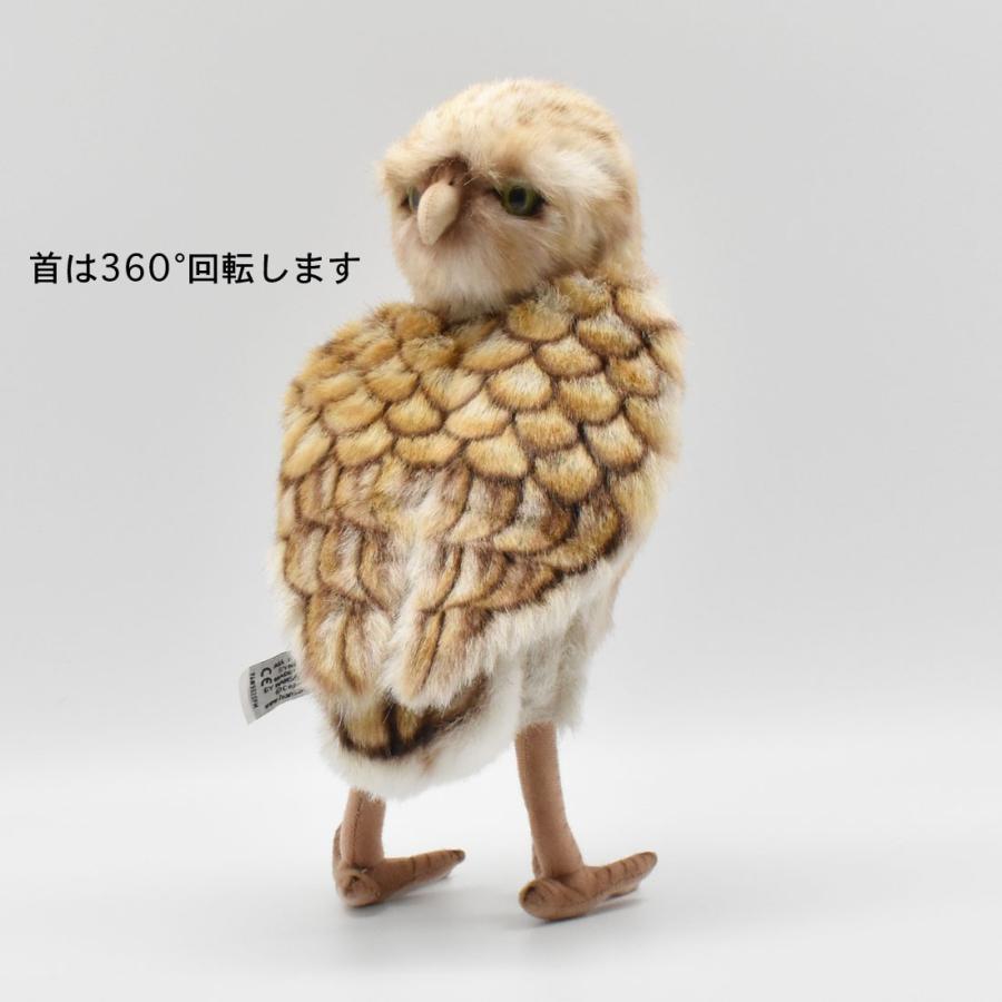 HANSA ハンサ アナフクロウ 鳥 5203 リアル 動物 ぬいぐるみ プレゼント ギフト 母の日 父の日|dearbear|07