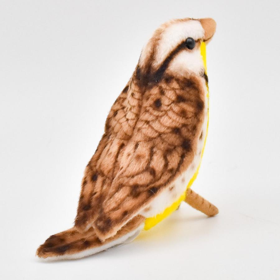 HANSA ハンサ キヅタアメリカムシクイ 鳥 5521 リアル 動物 ぬいぐるみ プレゼント ギフト 母の日 父の日 dearbear 03