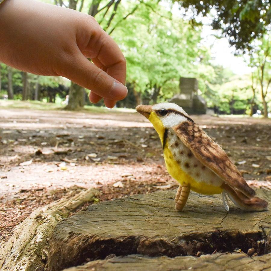 HANSA ハンサ キヅタアメリカムシクイ 鳥 5521 リアル 動物 ぬいぐるみ プレゼント ギフト 母の日 父の日 dearbear 10