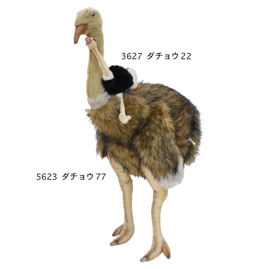 HANSA ハンサ ダチョウ 鳥 5623 ギフト対象外 リアル 動物 ぬいぐるみ プレゼント ギフト 母の日 父の日 dearbear 09