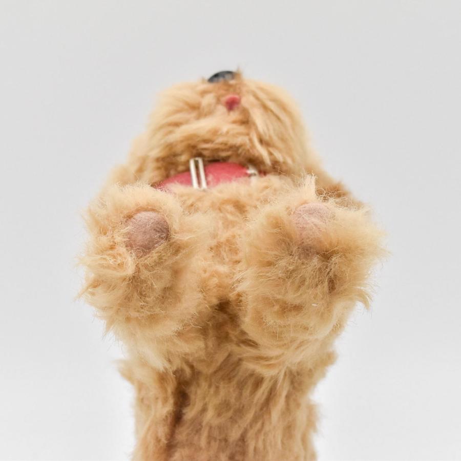 HANSA ハンサ トイプードル 犬 6153 リアル 動物 ぬいぐるみ プレゼント ギフト 母の日 父の日|dearbear|07